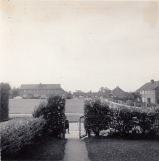 June 1964 looking North from front garden over privet hedge mostly still there | Patsy Mott (née Tyler)