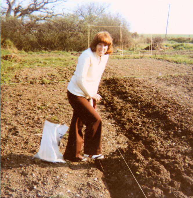 Photo looking south, digging potato trenches.  Wootton House out of sight behind the hedge in the background. | Nina Humphrey