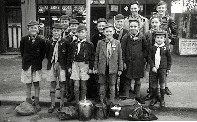 Cubs 1954