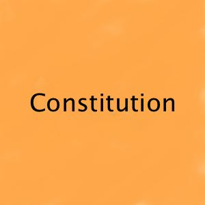 Laindon & District Community Archive Constitution