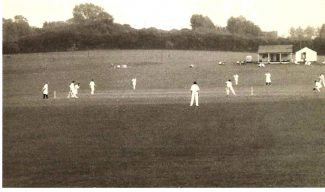Cricket in the Park-1950s