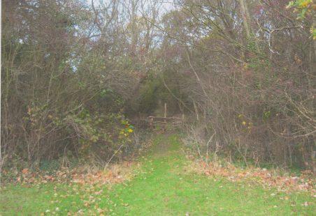 Laindon Park Conservation