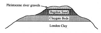 Geological succession at Westley Heights, Langdon Hills | From 'Essex Rock' by Gerald Lucy