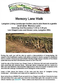 Memory Lane Walk 1.30pm 2nd November 2013