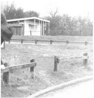 The Last Pavilion