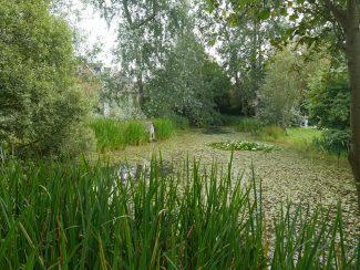 The large pond in Denehurst Gardens | Ken Porter