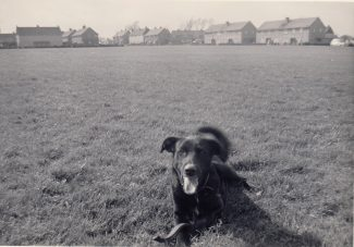 1961 Rex resting on playing field looking westerly towards King Edward Road, Brook Mead to left and Home Mead to the Right and you can just make out the telephone box | Patsy Mott (née Tyler)